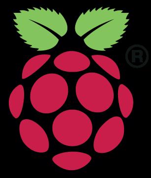 The Raspberry Pi Logo.